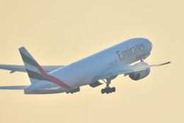 のんきな人さんが、羽田空港で撮影したエミレーツ航空 777-F1Hの航空フォト(飛行機 写真・画像)