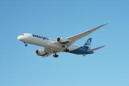 thomasYVRさんが、バンクーバー国際空港で撮影したウェストジェット 787-9の航空フォト(飛行機 写真・画像)