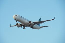 thomasYVRさんが、バンクーバー国際空港で撮影したウェストジェット 737-8CTの航空フォト(飛行機 写真・画像)