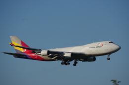 JA8037さんが、成田国際空港で撮影したアシアナ航空 747-446F/SCDの航空フォト(飛行機 写真・画像)
