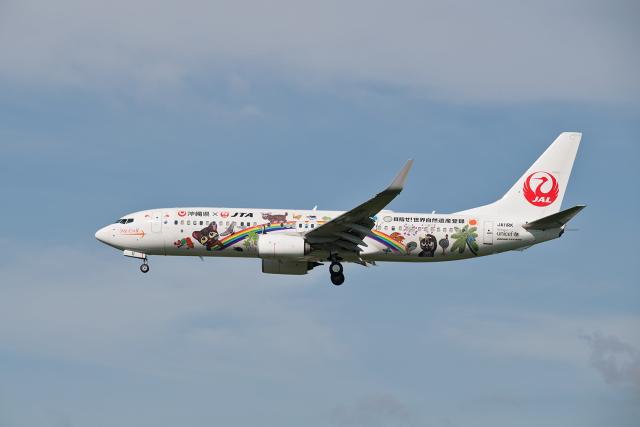 航空フォト:JA11RK 日本トランスオーシャン航空 737-800