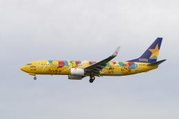 チーフさんが、福岡空港で撮影したスカイマーク 737-8ALの航空フォト(飛行機 写真・画像)
