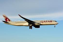 アルビレオさんが、成田国際空港で撮影したカタール航空 A350-941の航空フォト(飛行機 写真・画像)
