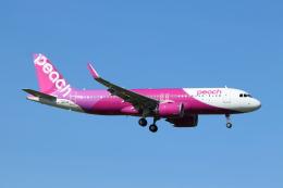フレッシュマリオさんが、成田国際空港で撮影したピーチ A320-251Nの航空フォト(飛行機 写真・画像)