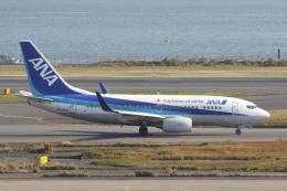 ズイ₍₍ง˘ω˘ว⁾⁾ズイさんが、羽田空港で撮影した全日空 737-781の航空フォト(飛行機 写真・画像)