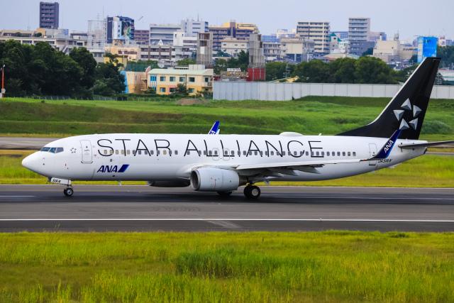 航空フォト:JA51AN 全日空 737-800