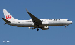 RINA-281さんが、小松空港で撮影した日本航空 737-846の航空フォト(飛行機 写真・画像)