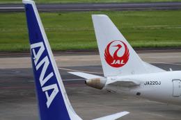 navipro787さんが、宮崎空港で撮影したジェイエア ERJ-170-100 (ERJ-170STD)の航空フォト(飛行機 写真・画像)