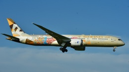 micelさんが、成田国際空港で撮影したエティハド航空 787-9の航空フォト(飛行機 写真・画像)