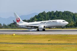 miffyさんが、広島空港で撮影した日本航空 737-846の航空フォト(飛行機 写真・画像)