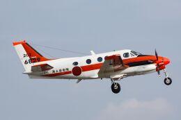 ズイ₍₍ง˘ω˘ว⁾⁾ズイさんが、松山空港で撮影した海上自衛隊 TC-90 King Air (C90)の航空フォト(飛行機 写真・画像)