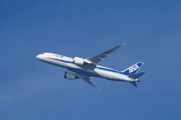 senbaさんが、羽田空港で撮影した全日空 787-8 Dreamlinerの航空フォト(飛行機 写真・画像)