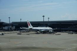 トレインさんが、成田国際空港で撮影した中国国際航空 A330-243の航空フォト(飛行機 写真・画像)