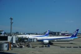 トレインさんが、成田国際空港で撮影した全日空 787-10の航空フォト(飛行機 写真・画像)