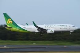 木人さんが、成田国際空港で撮影した春秋航空日本 737-8ALの航空フォト(飛行機 写真・画像)