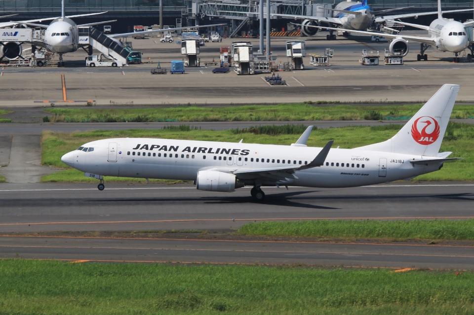 Hiro-hiroさんの日本航空 Boeing 737-800 (JA318J) 航空フォト