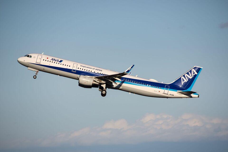 ズイ₍₍ง˘ω˘ว⁾⁾ズイさんの全日空 Airbus A321 (JA113A) 航空フォト