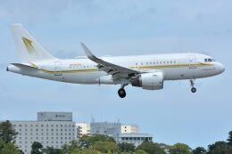 サンドバンクさんが、成田国際空港で撮影したスカイ・プライム A319-115CJの航空フォト(飛行機 写真・画像)