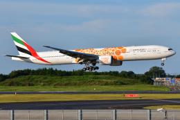 saoya_saodakeさんが、成田国際空港で撮影したエミレーツ航空 777-31H/ERの航空フォト(飛行機 写真・画像)