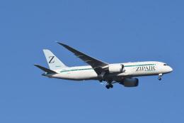 rangeroverさんが、成田国際空港で撮影したZIPAIR 787-8 Dreamlinerの航空フォト(飛行機 写真・画像)