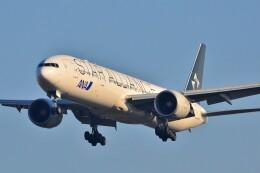 B747‐400さんが、成田国際空港で撮影した全日空 777-381/ERの航空フォト(飛行機 写真・画像)