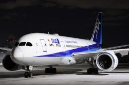 B747‐400さんが、羽田空港で撮影した全日空 787-8 Dreamlinerの航空フォト(飛行機 写真・画像)
