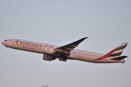 B747‐400さんが、成田国際空港で撮影したエミレーツ航空 777-31H/ERの航空フォト(飛行機 写真・画像)