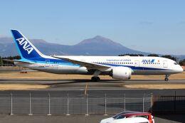 ズイ₍₍ง˘ω˘ว⁾⁾ズイさんが、鹿児島空港で撮影した全日空 787-8 Dreamlinerの航空フォト(飛行機 写真・画像)