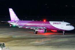 ズイ₍₍ง˘ω˘ว⁾⁾ズイさんが、鹿児島空港で撮影したピーチ A320-214の航空フォト(飛行機 写真・画像)