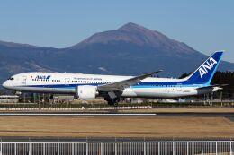 ズイ₍₍ง˘ω˘ว⁾⁾ズイさんが、鹿児島空港で撮影した全日空 787-9の航空フォト(飛行機 写真・画像)