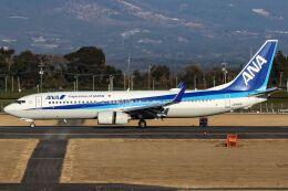 ズイ₍₍ง˘ω˘ว⁾⁾ズイさんが、鹿児島空港で撮影した全日空 737-881の航空フォト(飛行機 写真・画像)