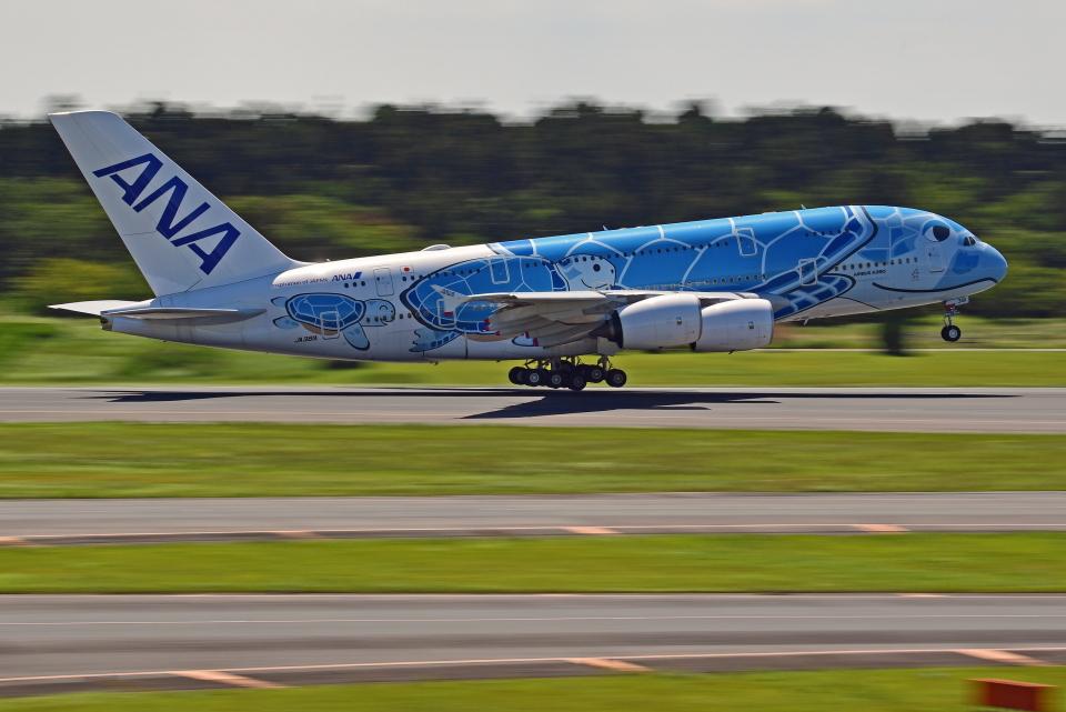 Souma2005さんの全日空 Airbus A380 (JA381A) 航空フォト