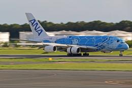 航空機製造メーカー:エアバス ガイド
