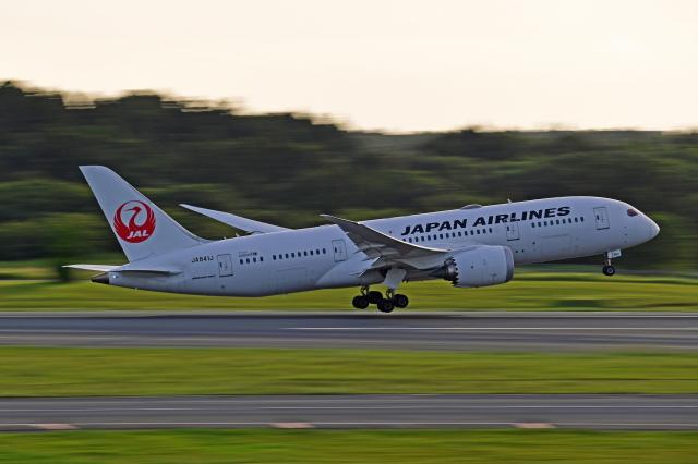 Souma2005さんが、成田国際空港で撮影した日本航空 787-8 Dreamlinerの航空フォト(飛行機 写真・画像)
