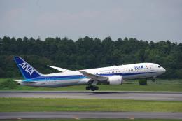 JA8037さんが、成田国際空港で撮影した全日空 787-9の航空フォト(飛行機 写真・画像)