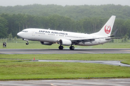 planetさんが、釧路空港で撮影した日本航空 737-846の航空フォト(飛行機 写真・画像)