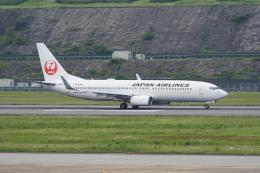 神宮寺ももさんが、長崎空港で撮影した日本航空 737-846の航空フォト(飛行機 写真・画像)