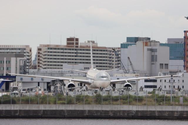 imosaさんが、羽田空港で撮影したカタールアミリフライト A330-202の航空フォト(飛行機 写真・画像)