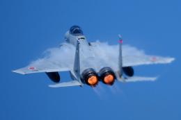 あずち88さんが、小松空港で撮影した航空自衛隊 F-15の航空フォト(飛行機 写真・画像)