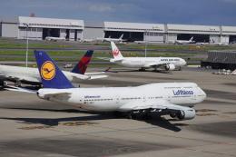 kikiさんが、羽田空港で撮影したルフトハンザドイツ航空 747-830の航空フォト(飛行機 写真・画像)