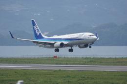 神宮寺ももさんが、長崎空港で撮影した全日空 737-881の航空フォト(飛行機 写真・画像)
