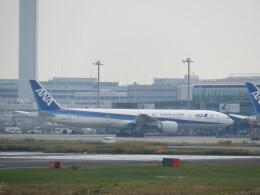 HYF 350さんが、羽田空港で撮影した全日空 777-381/ERの航空フォト(飛行機 写真・画像)