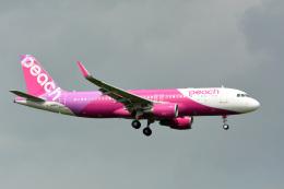アルビレオさんが、成田国際空港で撮影したピーチ A320-214の航空フォト(飛行機 写真・画像)