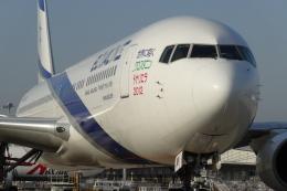 Deepさんが、関西国際空港で撮影したエル・アル航空 767-3Q8/ERの航空フォト(飛行機 写真・画像)