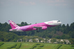IMP.TIさんが、成田国際空港で撮影したピーチ A320-214の航空フォト(飛行機 写真・画像)