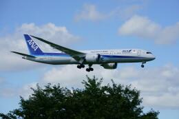 IMP.TIさんが、成田国際空港で撮影した全日空 787-9の航空フォト(飛行機 写真・画像)