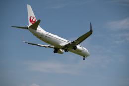 マックパパさんが、宮崎空港で撮影した日本航空 737-846の航空フォト(飛行機 写真・画像)