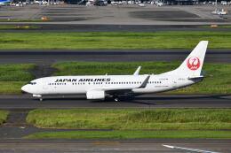 ポン太さんが、羽田空港で撮影した日本航空 737-846の航空フォト(飛行機 写真・画像)