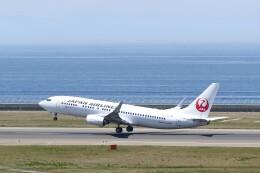 不揃いさんが、中部国際空港で撮影した日本航空 737-846の航空フォト(飛行機 写真・画像)