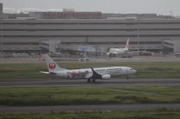 HYF 350さんが、羽田空港で撮影した日本航空 737-846の航空フォト(飛行機 写真・画像)